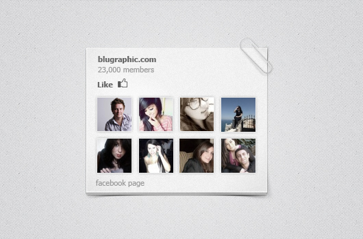 Custom Facebook Like Box (Psd)