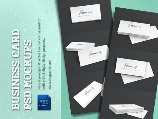 6 Business Card Template Presentations (Psd)
