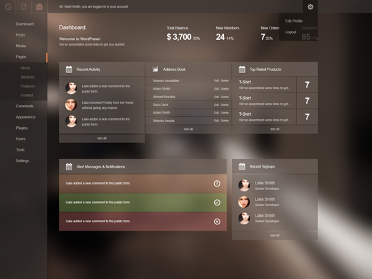admin panel psd website