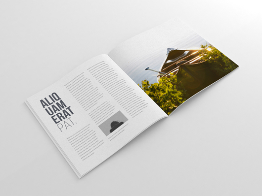 perspective magazine mockup
