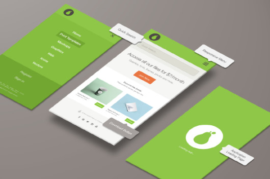 Application Screen Mockup