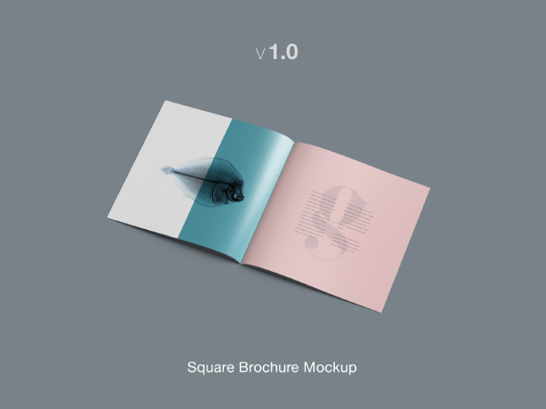 Brochure Mockup Template - Brochure mockup template