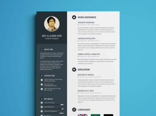 Very organized free resume template developed by Alamin Mir ; it ...