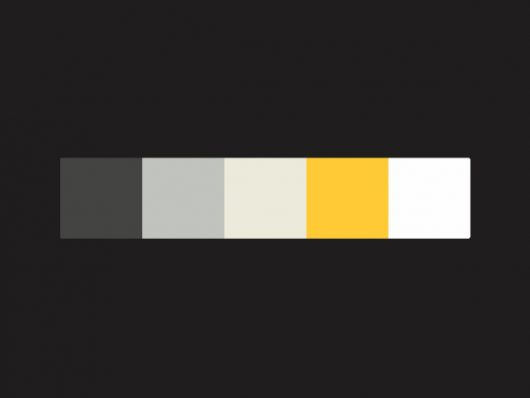 Best Color Palettes for Designers
