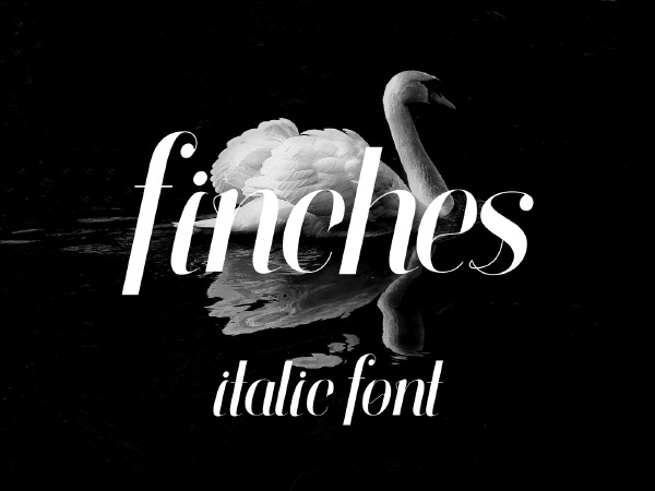 Finches Free Typeface