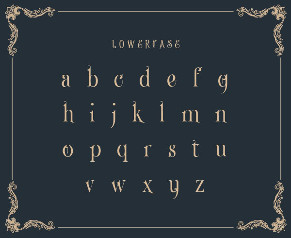 Price of Java lowercase font