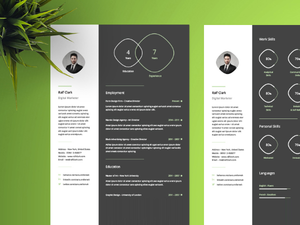 Modern Cv Template Free from www.blugraphic.com